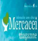 Mercacei Magazine 80: un recorrido internacional por el mundo del olivar y el AOVE