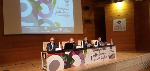 Más de 700 profesionales del sector se dan cita en el II Encuentro de Olivicultores del Grupo Oleícola Jaén