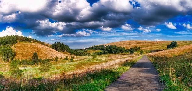 Moldavia se interesa por el sector oleícola