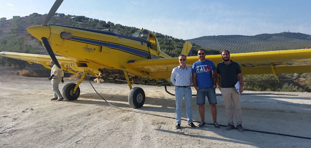 La DOP Baena pone en marcha un tratamiento aéreo para luchar contra la mosca del olivo
