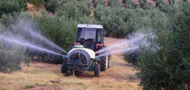 La DOP Sierra de Segura apuesta por los tratamientos terrestres colectivos contra la mosca del olivo