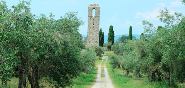 Nace en Italia el Movimento Turismo dell'Olio