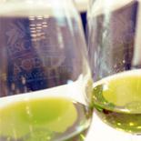 El aceite de oliva virgen extra, protagonista en la programación de Gastrofestival Madrid