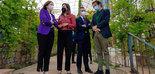 La Junta de Andalucía respaldará la construcción de un museo temático sobre el aceite de oliva en Ronda