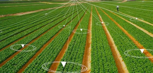 Luz verde al Plan Nacional para el Uso Sostenible de Productos Fitosanitarios 2018-2022