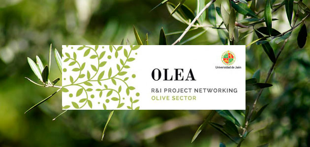 El III OLEA International Networking Event se celebrará on line del 26 al 28 de mayo