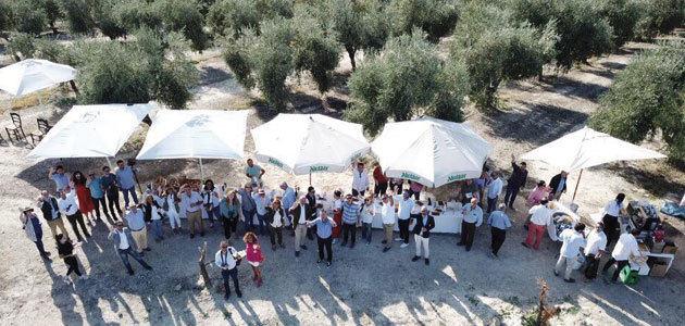 Oleícola Jaén celebra su tradicional desayuno de segundo día de cosecha