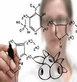 Crean un grupo de trabajo para estudiar los compuestos fenólicos más destacados de los AOVEs