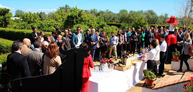 Spain Through its Wineries, una experiencia para disfrutar del enoturismo y el oleoturismo