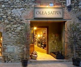 Olea Sativa
