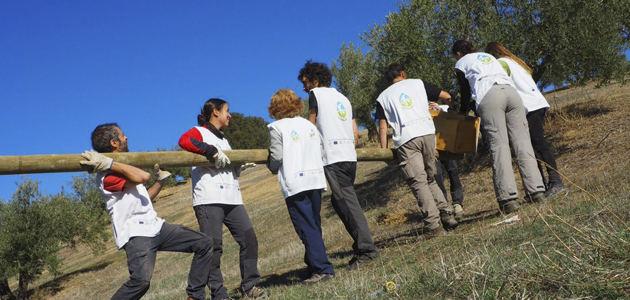 """""""El olivar es el cultivo más importante para la conservación de la biodiversidad en Europa"""""""