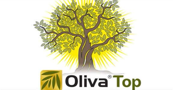 Nueva tecnología de sanidad vegetal para contribuir a la sostenibilidad del olivar