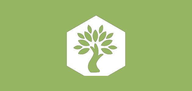 Olive Wellness Institute, una iniciativa para difundir los beneficios del AOVE