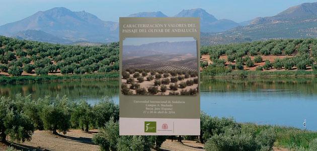 Una publicación recoge los valores patrimoniales del paisaje del olivar andaluz