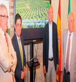 Inician el expediente para que el paisaje del olivar sea declarado Patrimonio de la Humanidad