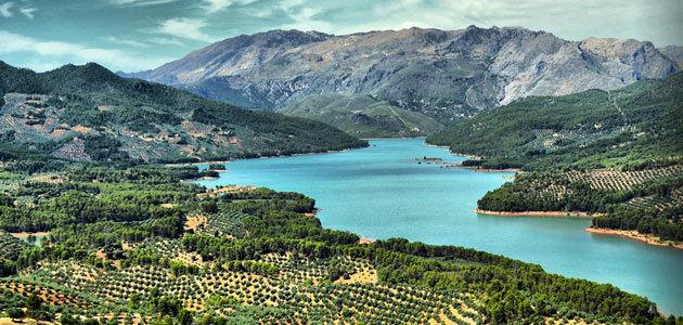 Nuevo impulso a la candidatura del Paisaje del Olivar andaluz como Patrimonio Mundial de la Unesco