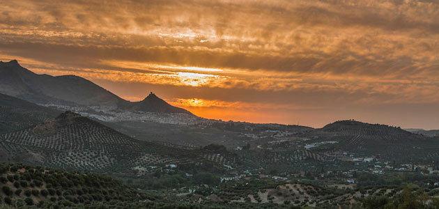 La huella del olivar en el territorio y su carácter narrativo