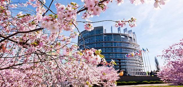 Propuestas agrarias para las próximas elecciones europeas