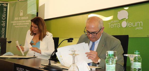 Andalucía respalda la modernización de explotaciones e industrias olivareras con 75 millones en ayudas