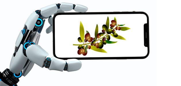 La digitalización en el sector oleícola: una necesidad inmediata