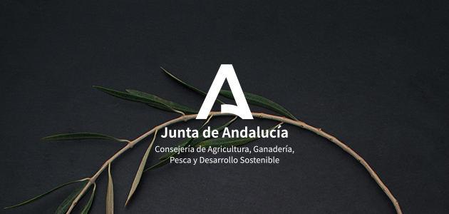 La Consejería de Agricultura de Andalucía patrocinó el Especial Día Mundial del Olivo 2020 de Grupo Editorial Mercacei