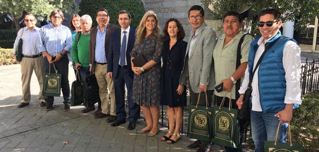 El sector olivícola peruano pide un acercamiento al COI con miras a la futura adhesión del país al Convenio Internacional del Aceite de Oliva