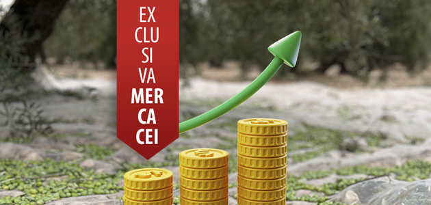 ¿Qué sucederá con los precios del aceite de oliva en los próximos meses?