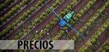 Análisis de la situación de los precios del aceite de oliva: causas, soluciones y previsiones