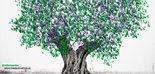 El Concurso de Relatos Cortos sobre Olivar, primer premio AEMO a la Difusión de la Cultura del Olivo