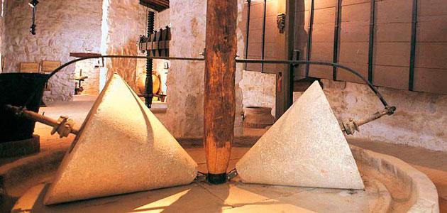 AEMO convoca su premio a la difusión de la cultura del olivo