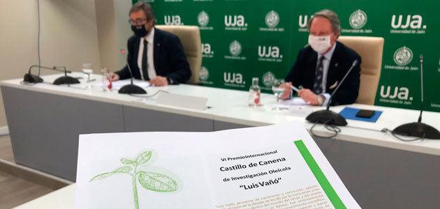 Convocado el VI Premio Internacional Castillo de Canena de Investigación Oleícola
