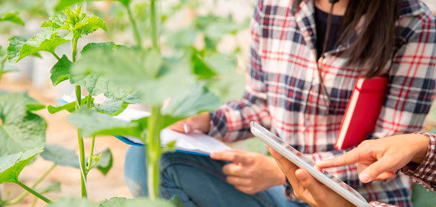 Programa Cultiva: formación práctica para jóvenes profesionales agrarios
