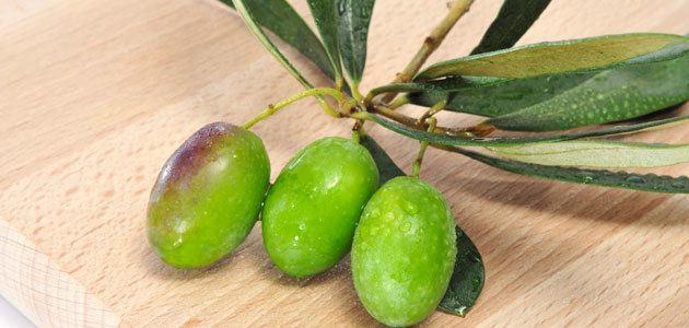 Aprobado el Real Decreto que permitirá la autorregulación del sector del aceite de oliva