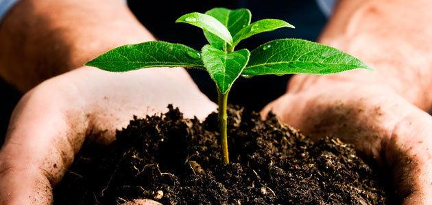Ecovalia solicita que se aplace el nuevo reglamento europeo para la producción ecológica