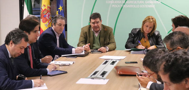 La Junta de Andalucía ofrece su apoyo técnico a todos aquellos interesados en presentar ofertas al almacenamiento