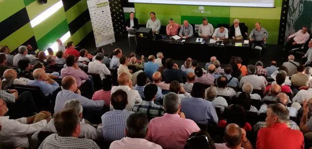 """El sector oleícola nacional visualiza su unidad ante la """"insostenible"""" situación de bajos precios"""