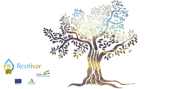 Un proyecto acredita la viabilidad de la aplicación de aguas regeneradas al cultivo del olivar