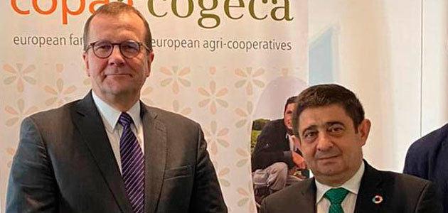 La Diputación traslada al Copa-Cogeca la situación del olivar jiennense
