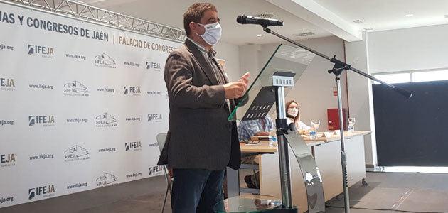 La Diputación de Jaén pide al Gobierno que permita a desempleados trabajar en la aceituna y mantener sus prestaciones