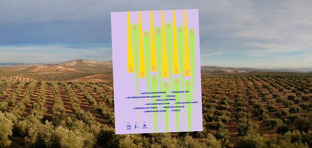 IV Rutas del Aceite: descubre las almazaras y AOVEs de Jaén
