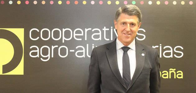 Rafael Sánchez de Puerta, reelegido presidente del Grupo de Dialogo Civil de Aceite de Oliva y Aceitunas de la CE