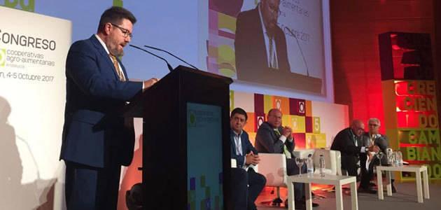 Nuevas ayudas para la modernización de agroindustrias y fusión de cooperativas en Andalucía
