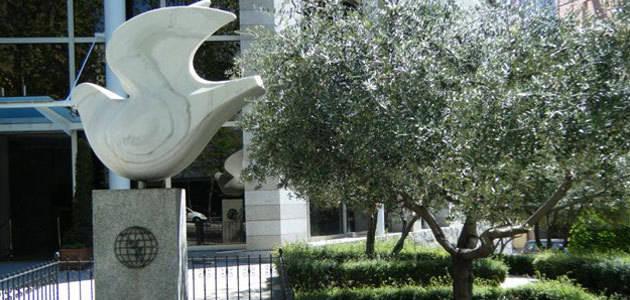El COI estudiará la posibilidad de conceder su reconocimiento a los centros de formación sobre olivar y aceite de oliva