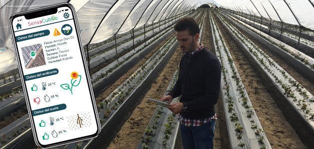 SensaCultivo o cómo gestionar de manera eficiente los cultivos