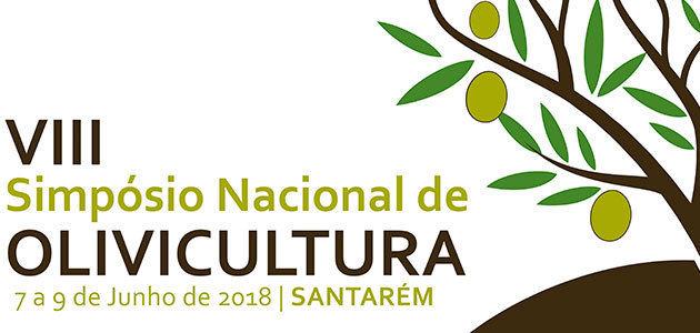 La rentabilidad del olivar, a debate en el VIII Simposio Nacional de Santarém (Portugal)