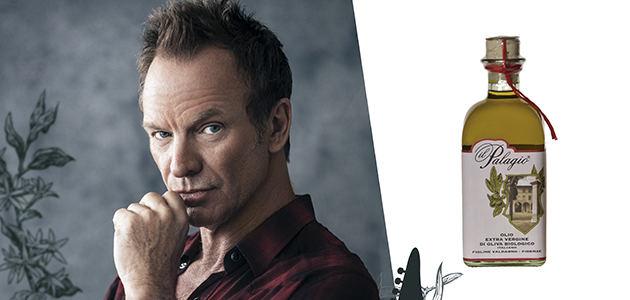 "Sting: ""El olivo me transmite paz y tranquilidad"""