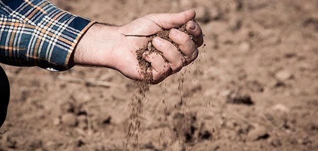 UPA desarrolla un programa para mejorar la materia orgánica de los suelos agrícolas