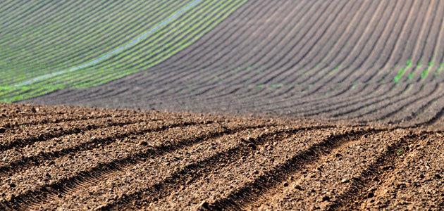 El MAPA prepara una nueva norma sobre nutrición sostenible en los suelos agrarios