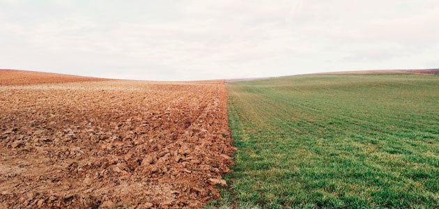 Decálogo de buenas prácticas agrícolas para mitigar el cambio climático y la erosión