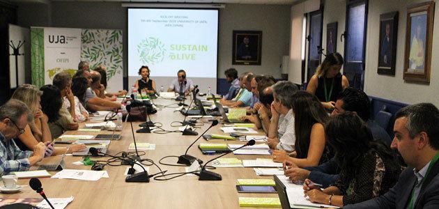 Primeros pasos del proyecto europeo Sustainolive para mejorar la sostenibilidad del olivar